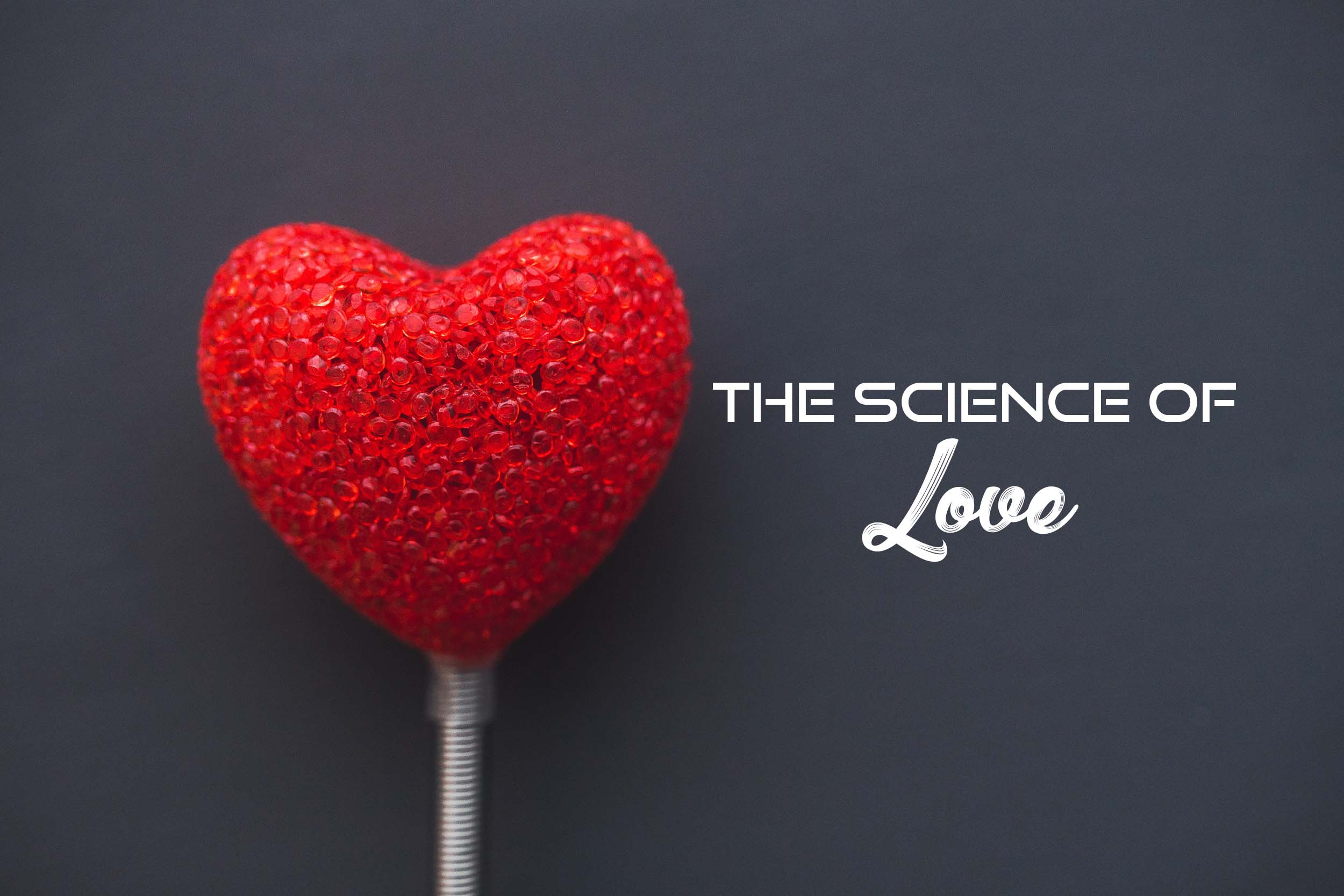 The Science of Love graphics